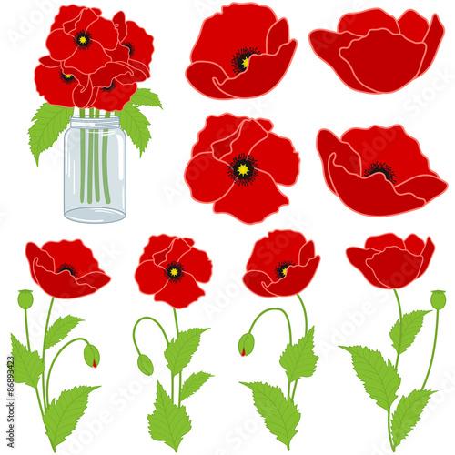 Fototapeta Red Poppies Set obraz