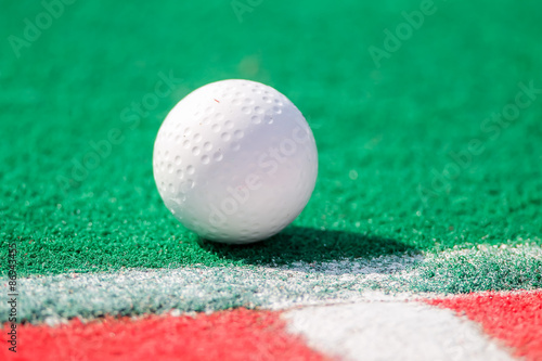 Fotografiet  Field hockey ball ready for a corner