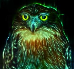 Digital fantasy drawing of an owl