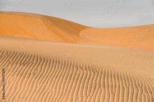 Poster de jardin Desert de sable Nature of the Sahara desert in Senegal, Africa