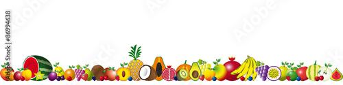 Foto op Canvas Vogels in kooien Banner of seasonal fruits and tropical