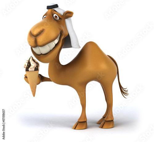 Fotobehang Boerderij Fun camel