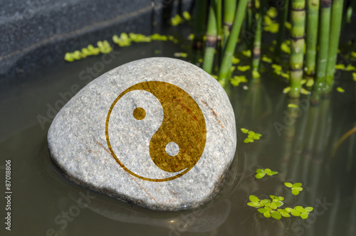 Fotografia  Stein in Wasser mit Om, Yoga, Tai Chi, Qi gong, Feng Shui mit Wasserlinsen und S