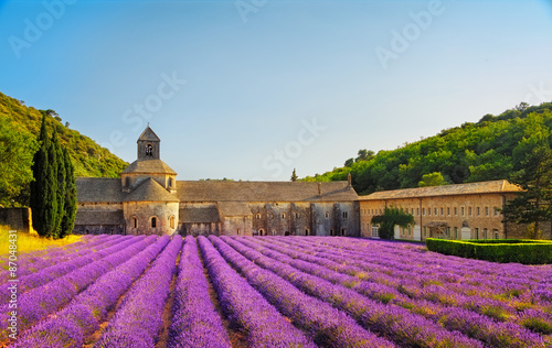 Foto auf Gartenposter Lavendel Abbey of Senanque blooming lavender flowers on sunset. Gordes, L