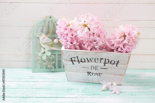 Foto-Plissee - Fresh pink hyacinths in wooden box (von daffodilred)