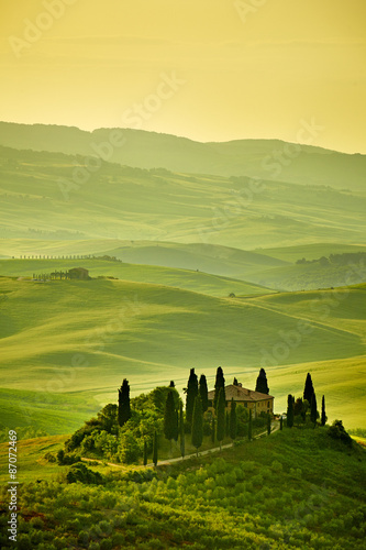 Tuscany hills - 87072469