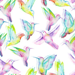 Seamless pattern of colored colibri painted with watercolors on a white background