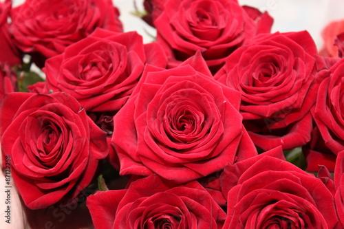 Розы #87122258