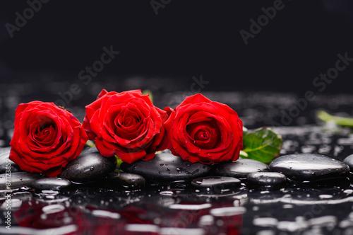 lezace-czerwone-roze-z-kamieniami