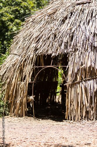 Fotografie, Obraz  Dry grass hut in Africa