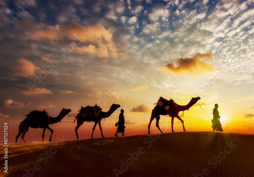 Fotografia  Two cameleers camel drivers with camels in dunes of Thar deser