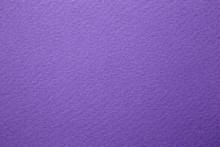 Purple Cardboard