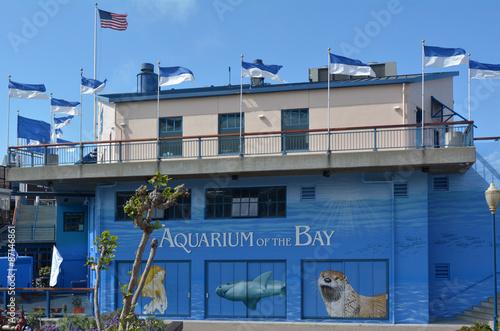 Keuken foto achterwand San Francisco Aquarium of the Bay in San Francisco - California