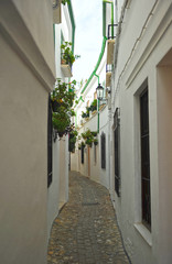 Fototapeta Uliczki Calle en el Barrio de la Villa, Priego de Córdoba, Andalucía, España