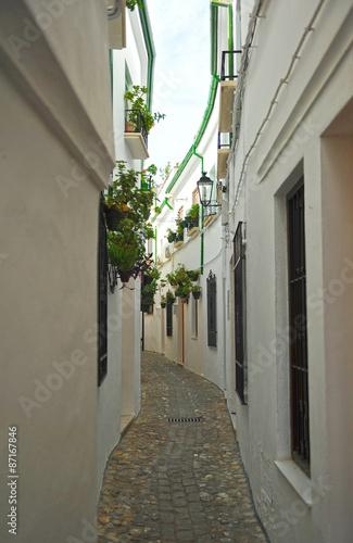 Calle en el Barrio de la Villa, Priego de Córdoba, Andalucía, España - 87167846