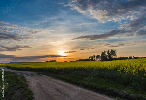 Fototapeta beautiful sunset on a country  road with blue sky and clouds obraz na płótnie