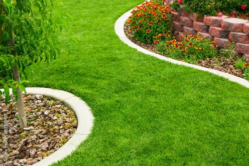 Foto op Aluminium Tuin Garden