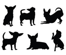 Chihuahua Dog Illustration Set