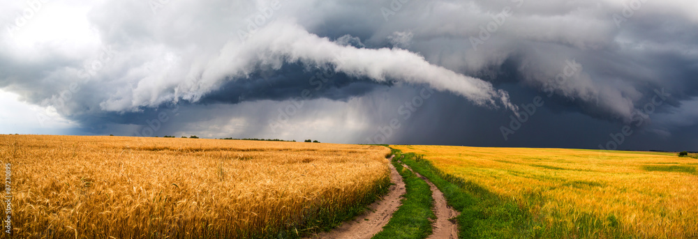 Fototapety, obrazy: Country road, storm