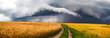 Leinwandbild Motiv Country road, storm