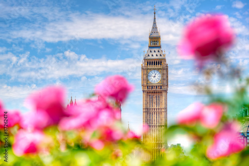 Poster Londres Big Ben,, London UK. View from a public garden with beautiful roses flowers.