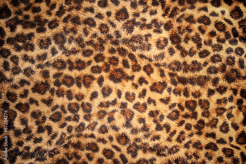 Poster Luipaard Hide of leopard pattern for background and texture