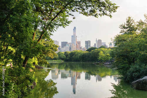 Fotografia Central park in New York in a foggy morning day
