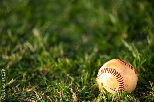 Papiers peints Azalea Baseball on Grass