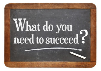 Fototapeta Motywacje What do you need to succeed?