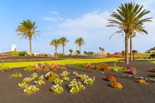 Flowers And Palm Trees On Roundabout Near Yaiza Village, Lanzarote Island, Spain