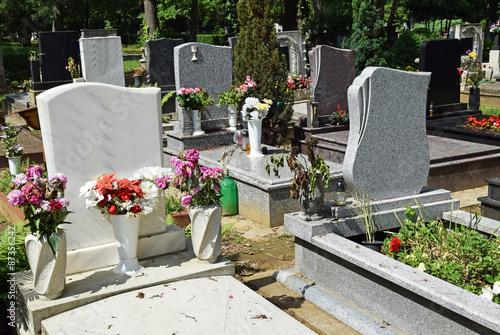 Foto op Canvas Begraafplaats Tombstones in the public cemetery
