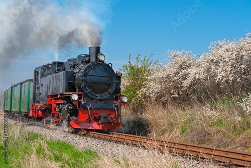 Fototapeta Historical steam train on island Rugen obraz
