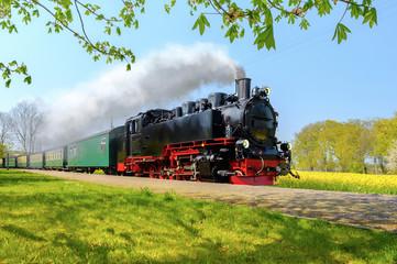Povijesni njemački parni vlak prolazi poljima u sprinu
