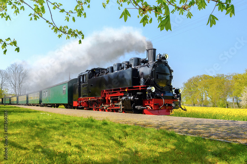 Fototapeta Historical German steam train passes through the fields in sprin obraz na płótnie