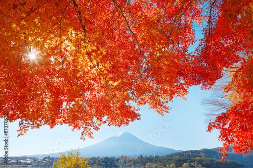 Keuken foto achterwand Rood traf. 紅葉と富士山