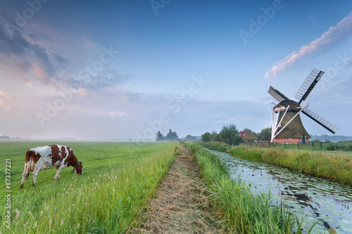 Poster Mills cow on pasture and windmill by river