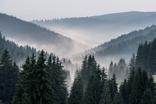 Foggy Landscape. View From Mountains To The Valley Covered With Foggy.