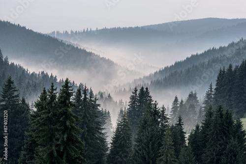 widok-z-gor-na-doline-pokryta-mgla