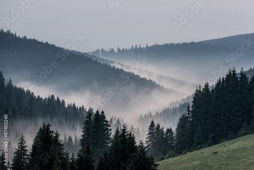 Kolory fototapet mglisty-krajobraz-widok-z-gor-do-doliny-pokrytej-mglisty