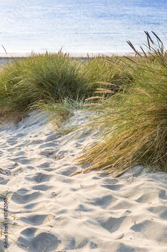 piaszczyste-wydmy-porosniete-trawa-widok-na-plaze