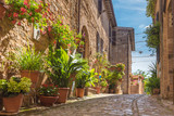 Fototapeta Na drzwi - The cobbled streets of the beautifully decorated walls with colo
