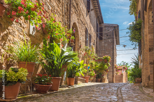 Spoed Foto op Canvas Mediterraans Europa The cobbled streets of the beautifully decorated walls with colo
