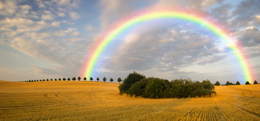 colorful rainbow over the field