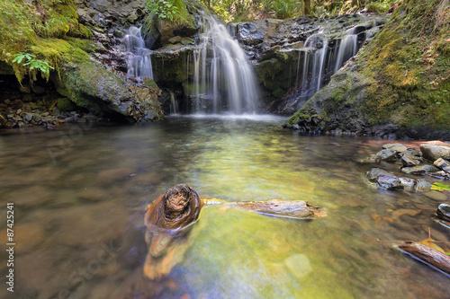 Emerald Falls along Gorton Creek with Driftwood in Oregon Canvas Print