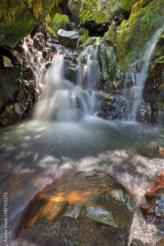 Hidden Waterfall Along Gorton Creek in Oregon Canvas Print