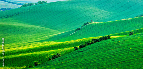 Foto op Aluminium Groene Panorama of Moravian rolling landscape with hunting tower shack