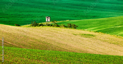 Moravian rolling landscape with hunting tower shack Poster