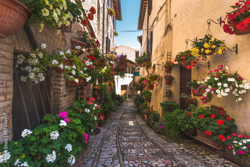 Fototapety, obrazy: Floral street in central Italy, in the small Umbrian medieval town