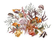 Summer Vintage Watercolor Sea Life Greeting Card With Seaweed