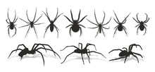 Set Of Silhouettes Of Spiders.